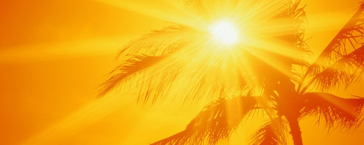 kak-fotografirovat-v-solnechnuju-pogodu