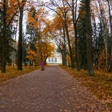pavlovsk_autumn_2014_10_13_1833